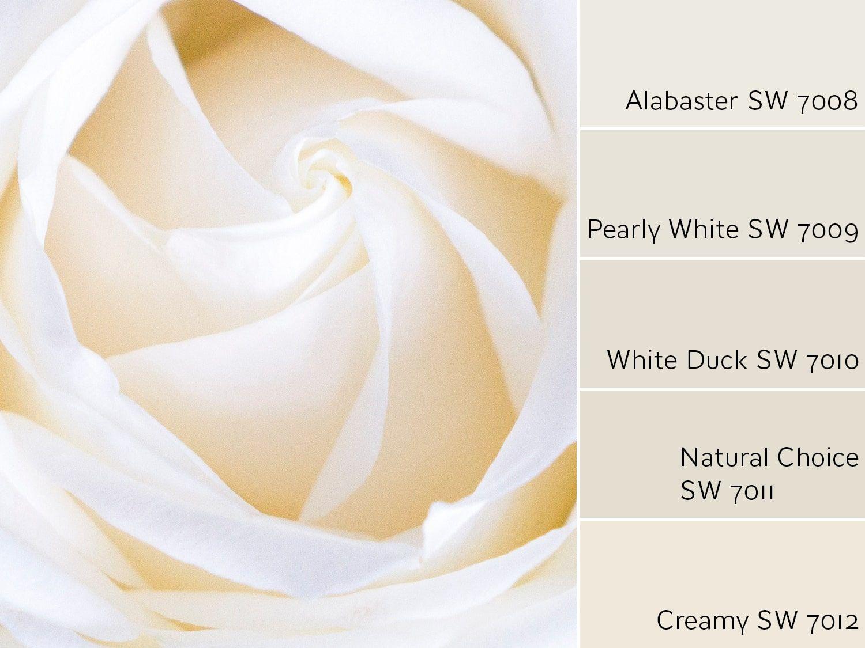 Alabaster Sw 7008 Review Alabaster Color Exterior Color Schemes