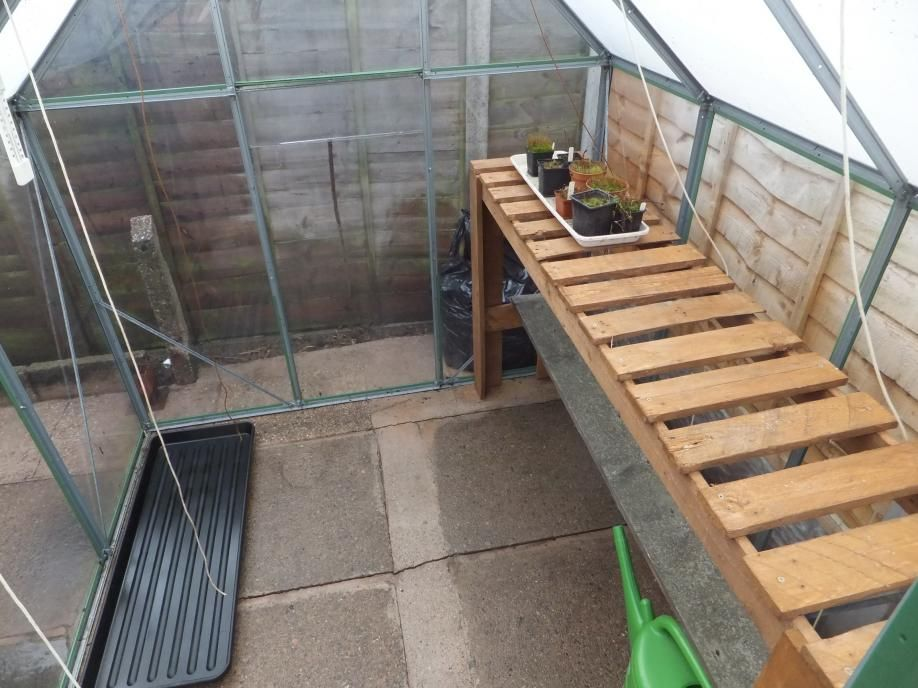 Greenhouse shelving google search greenhouse ideas for Inexpensive greenhouse shelving wood