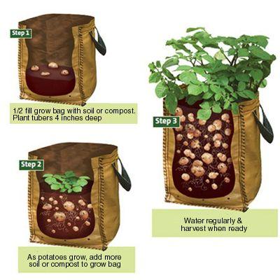 Potato Grow Bags Garden Stuff Pinterest Gardens Chicken