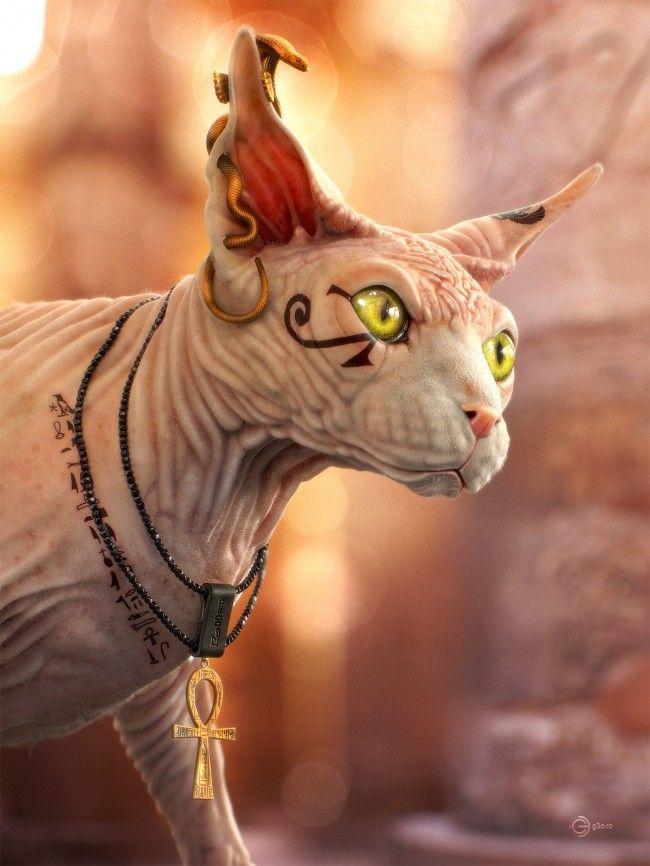 Magical Mystical Cat Names