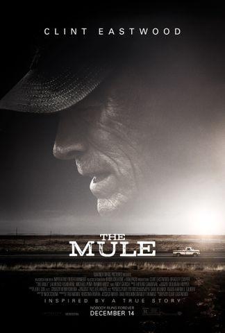 The Mule 2018 Rotten Tomatoes Filme Clint Eastwood Kino