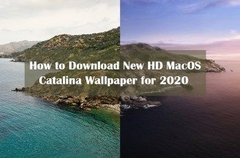 How to Download New HD MacOS Catalina Wallpaper for 2020