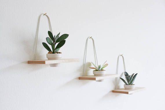 Modern Hanging Wall Planter Maple Set of 3