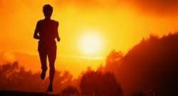 Atividade física no verão - Cuidados a se tomar - Aliados da Saúde