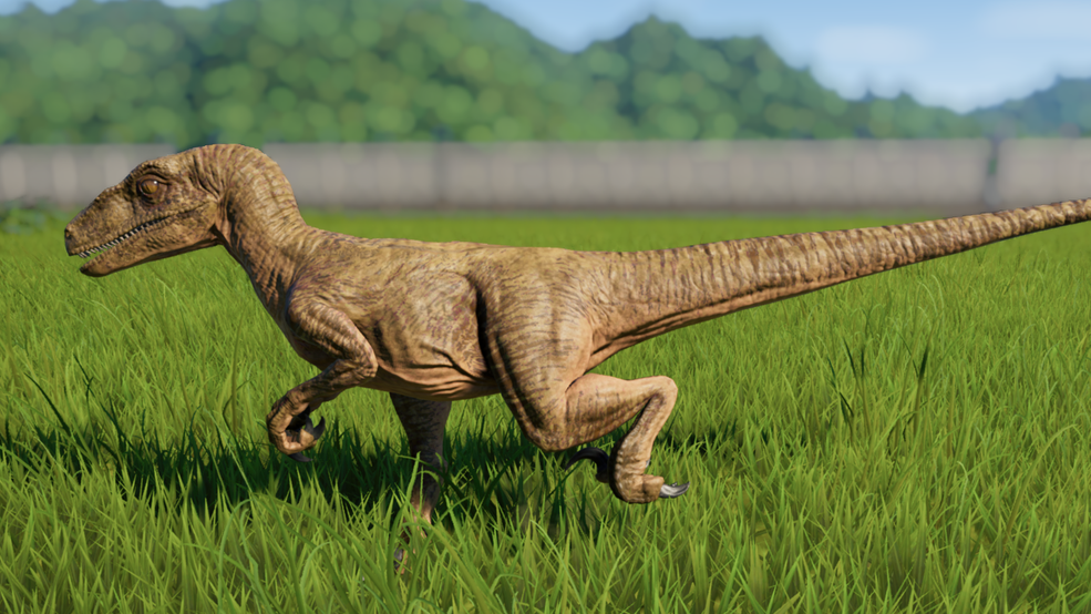 Velociraptor en 2020