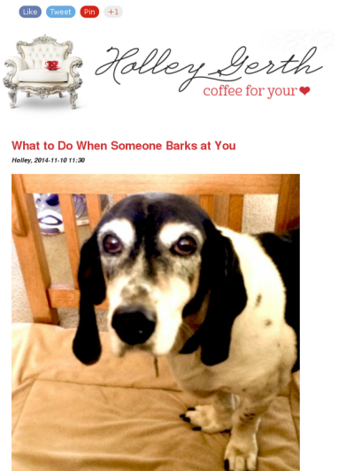 What to do when someone barks at you. - Holley Gerth