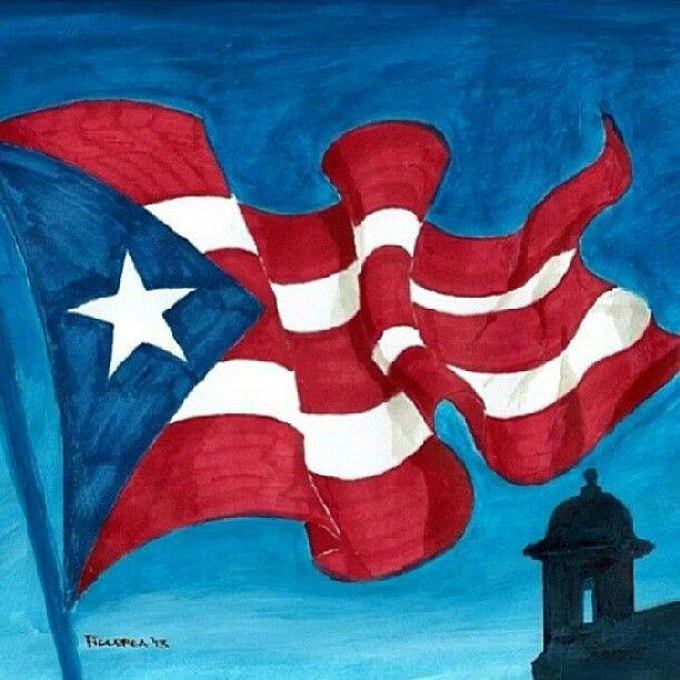 Puerto Rican Flag Puerto Rico Art Puerto Rican Culture Puerto Rican Flag