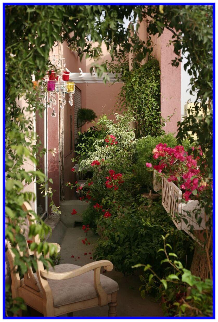 64 Reference Of Balcony Outdoor Outdoor In 2020 Flower Garden Design Small Balcony Garden Beautiful Flowers Garden