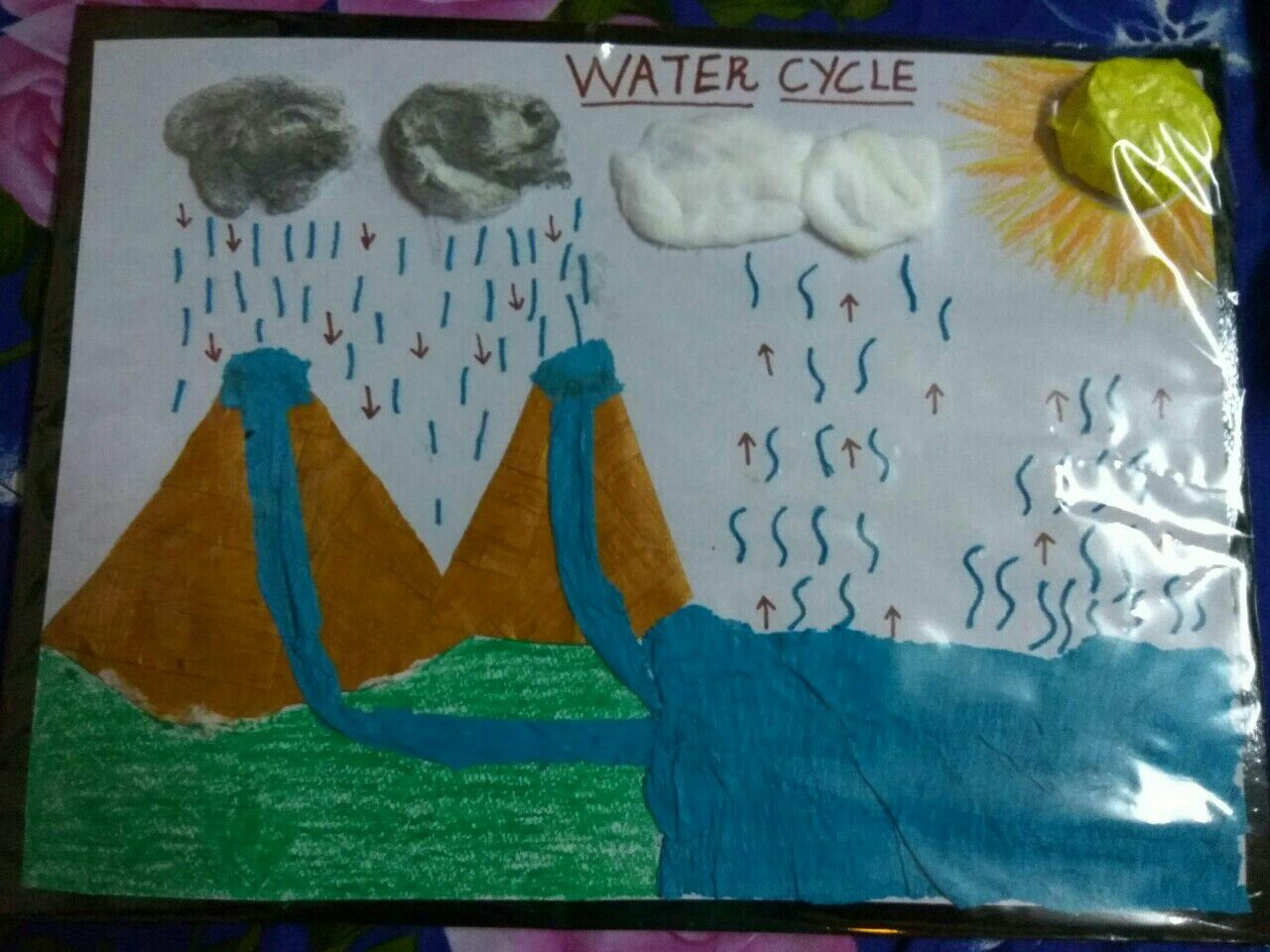 Water Cycle Project For Jr