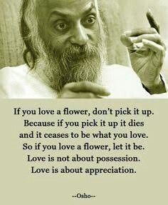 Love and appreciation