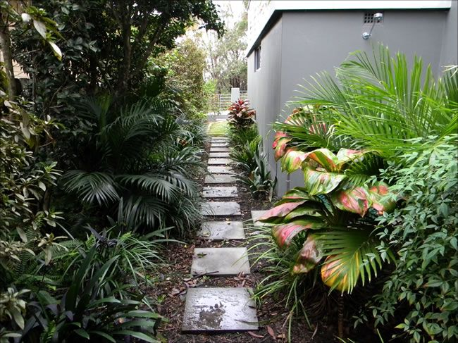 Tropical Backyard Ideas Bali Dream Landscapes Central Coast Nsw Balinese Landscape Design