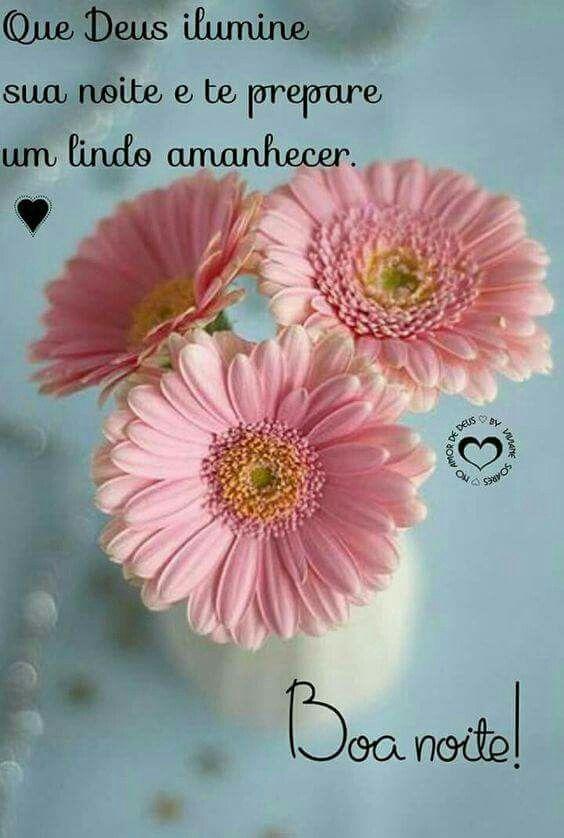 Pin De Isaias Moraes Em Maluco Com Imagens Rosas Imagens De