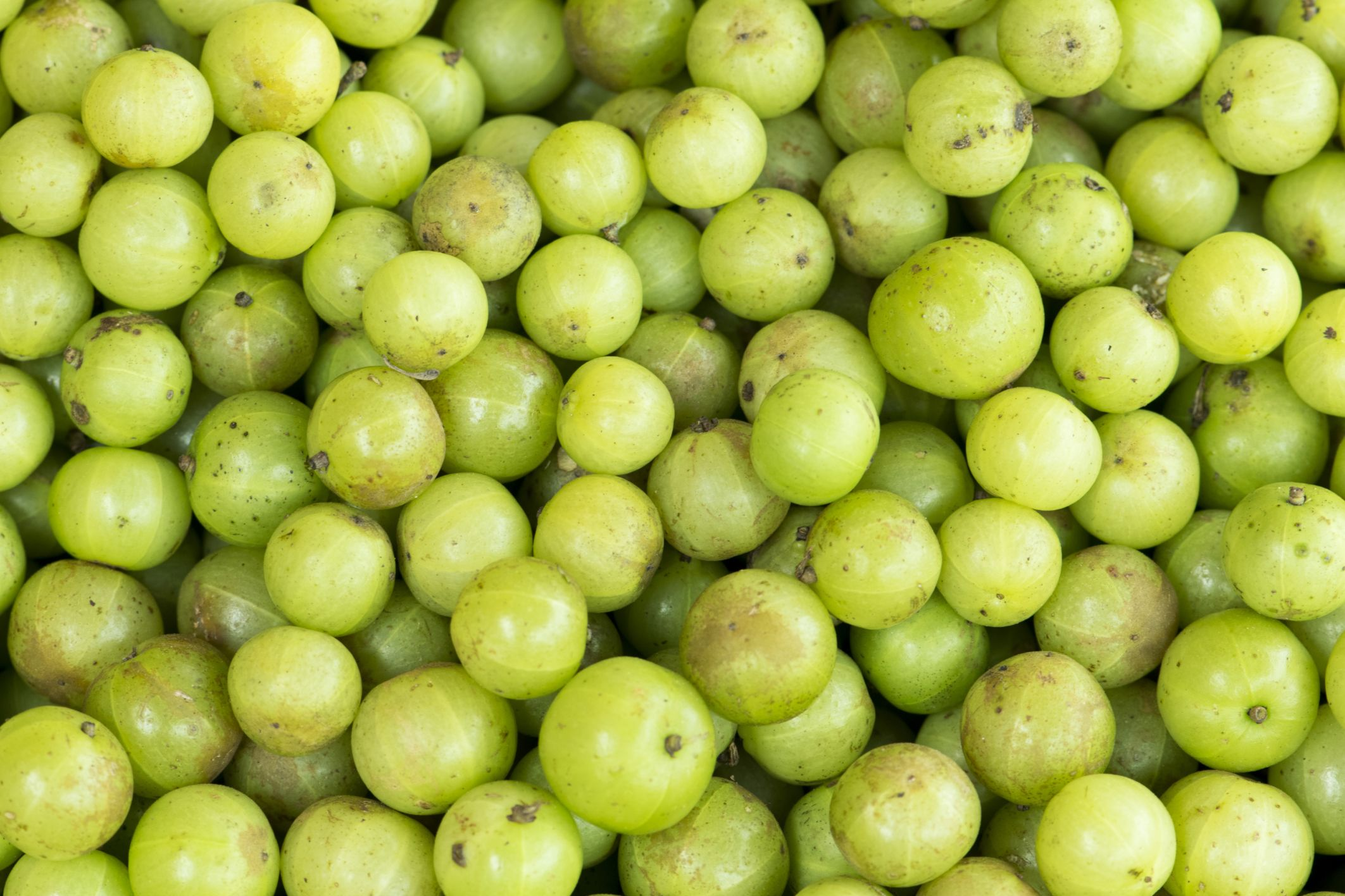 background with fresh Indian gooseberry in market | Fit tea, Apple images,  Design essentials