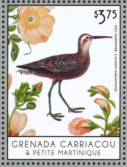 Stilt Sandpiper stamps - mainly images - gallery format