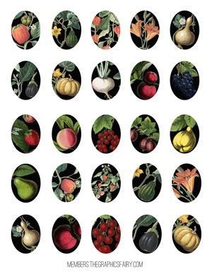 collage_sheet_ovals_fruit_veg_graphicsfairy