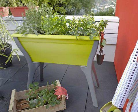 Aménager Un Carré Potager Sur Le Balcon Ou La Terrasse | Vegetable