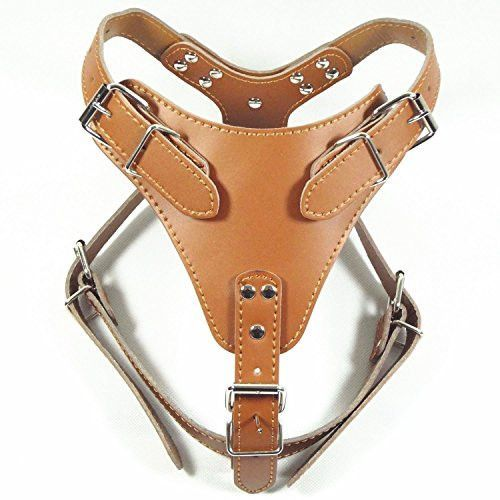 Designer Hand Crafted Leather Prince Dog Harness, Amish Leather Gone