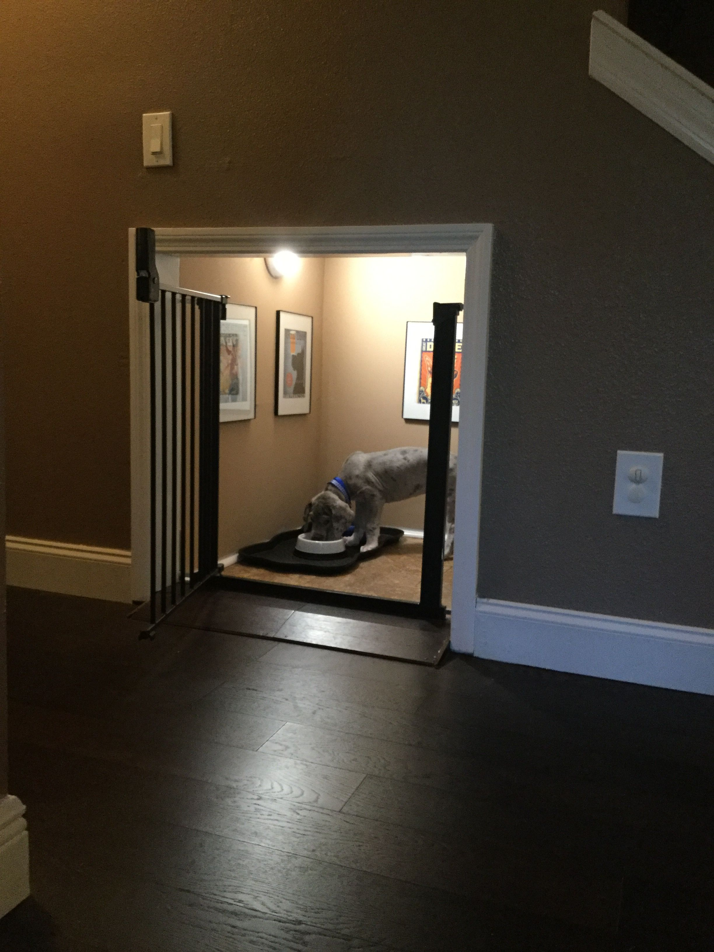 Dog room done under the stairs also our puppies rooms spaces rh pinterest