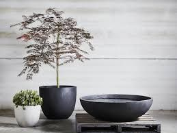 Image result for feature pot in garden