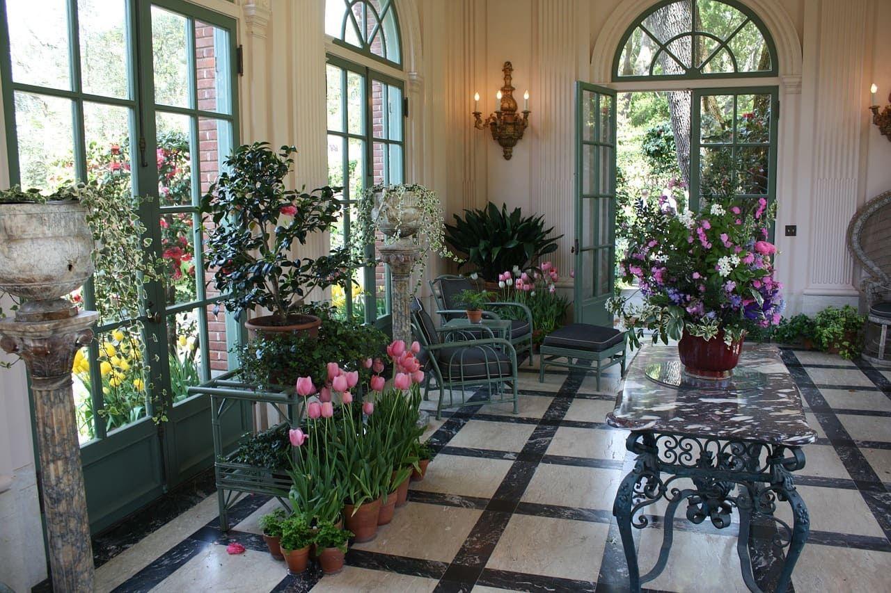 Pin By Rosepedia On زراعة النباتات و الأشجار Plants Indoor Garden Indoor Plants