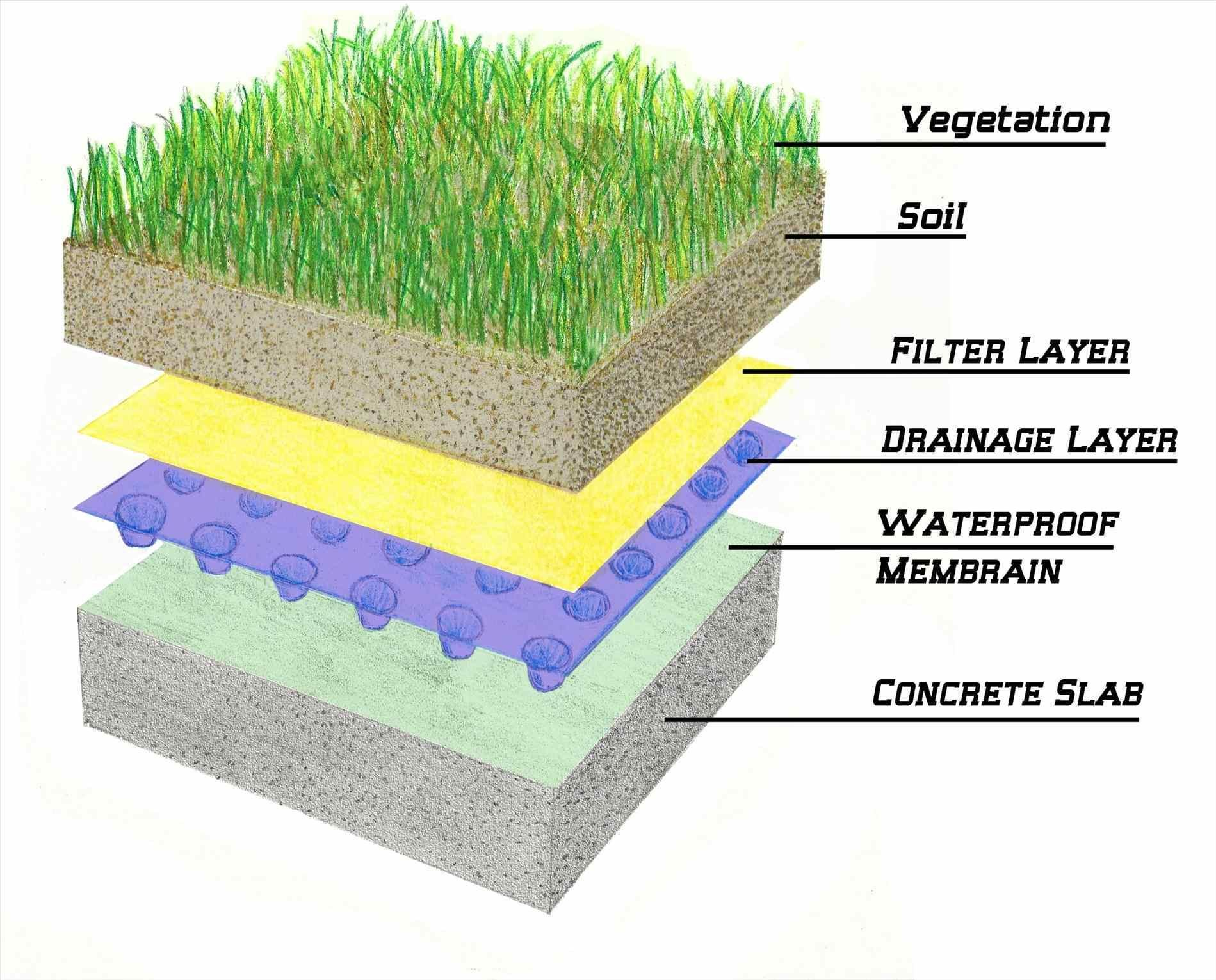 Green Roofing And Construction | Green roofs, Construction and Roof ...
