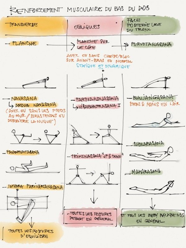 renforcement musculaire du bas du dos