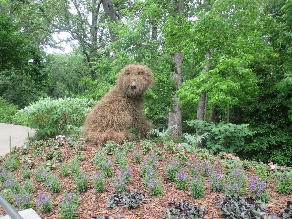 a4ec5dc93f65db68c760039b8c67cdb4 - Are Dogs Allowed At The Botanical Gardens