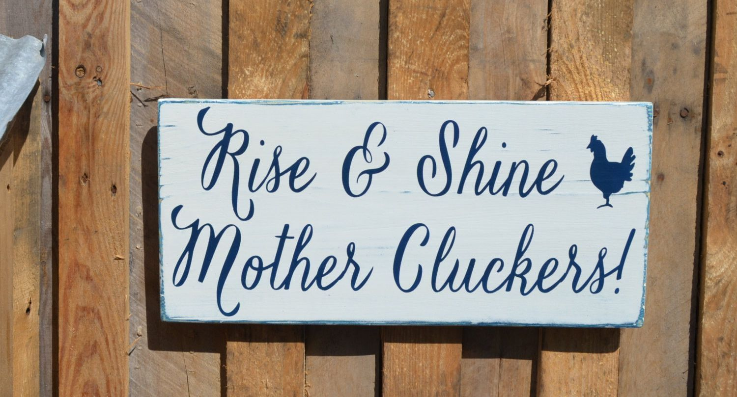 Funny Chicken Signs: Farm House Decor, Farm Sign, Farmer Gift, Chicken Coop