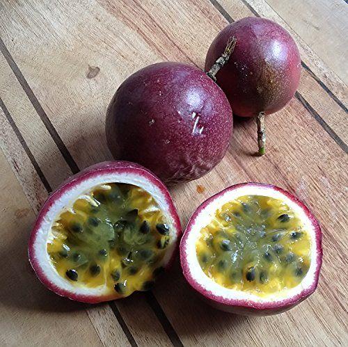Robot Check Passiflora Passion Fruit Plant Edible