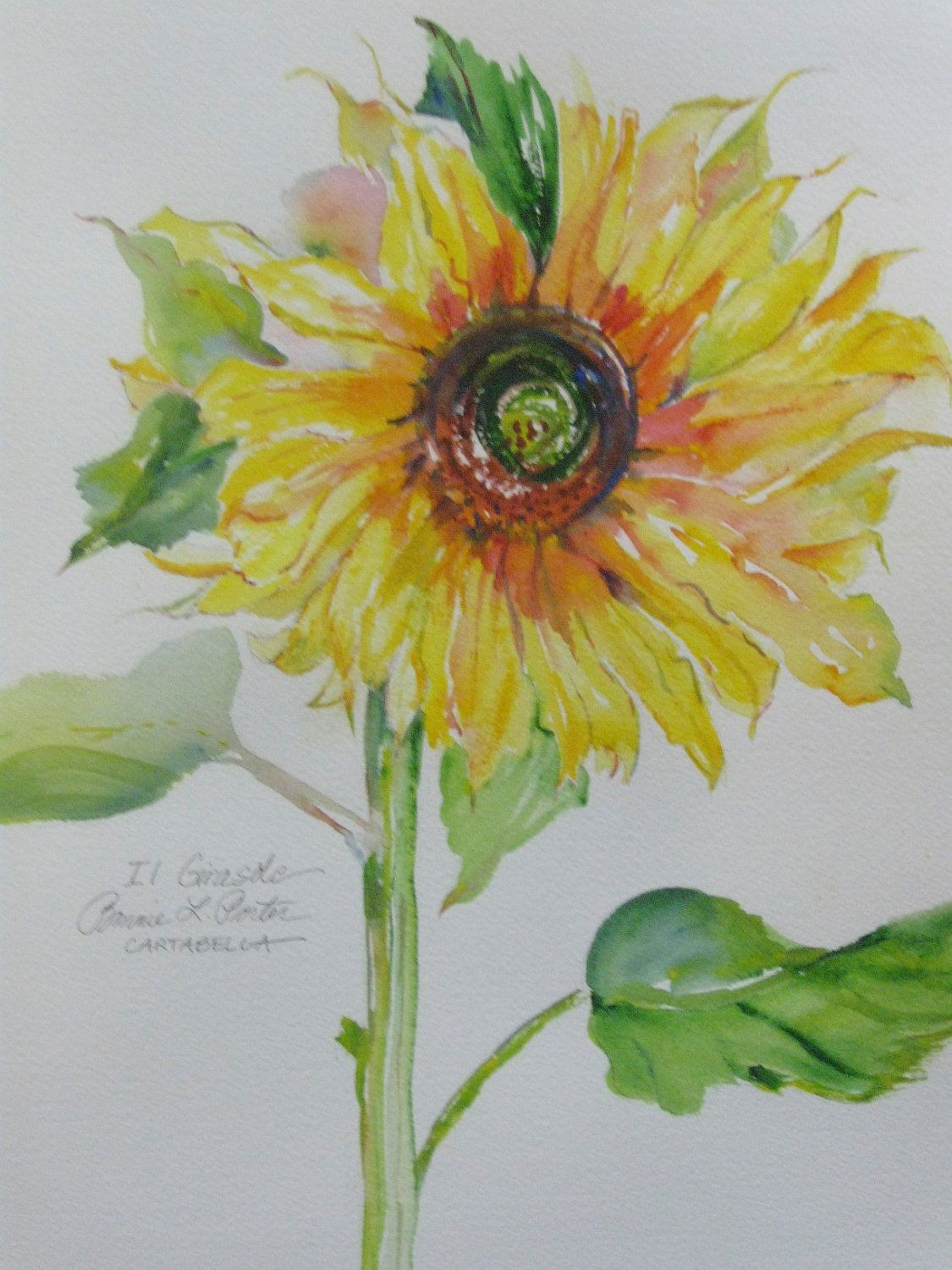 Sunflower In Tuscany Awash With Color Original Watercolor Via