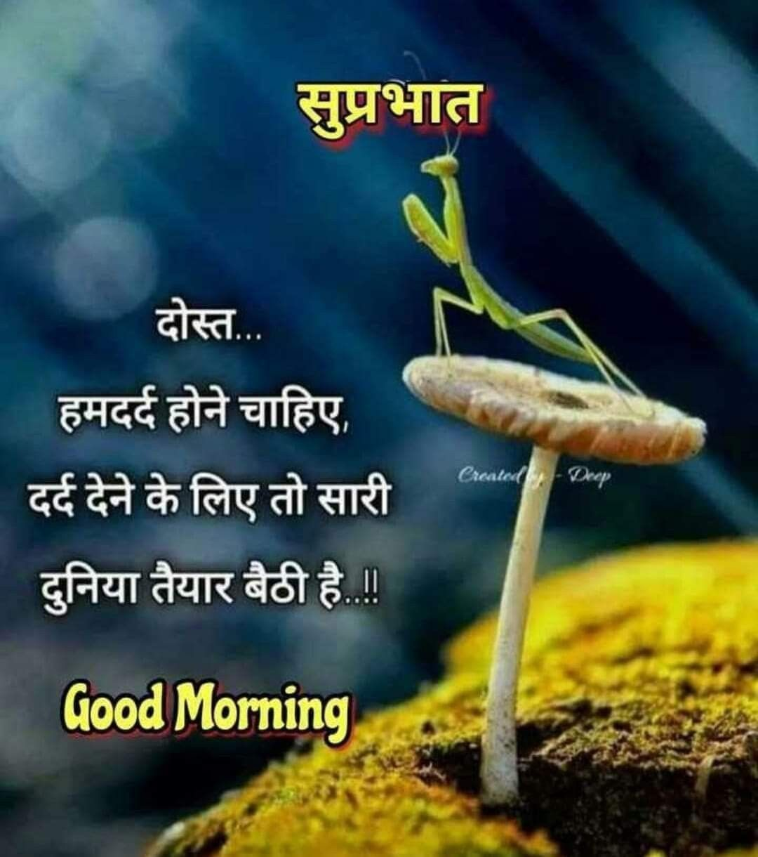 Pin By Nigam Numberdar On Good Morning N Good Night Hindi Good Morning Quotes Good Morning Quotes Good Day Quotes