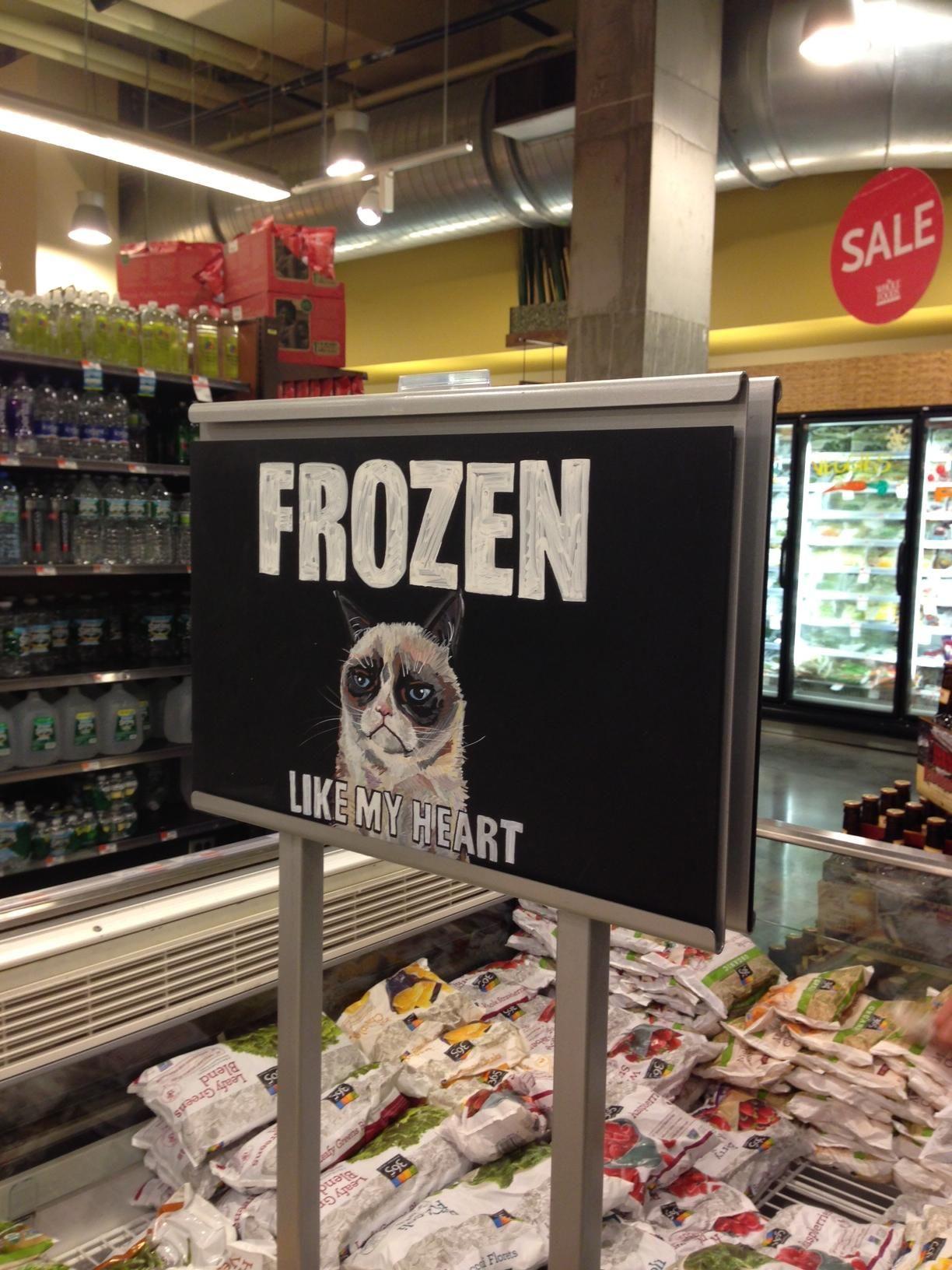 I Found A Grumpy Friend In Whole Foods Grumpy Cat Frozen Grumpy Cat Grumpy Cat Humor