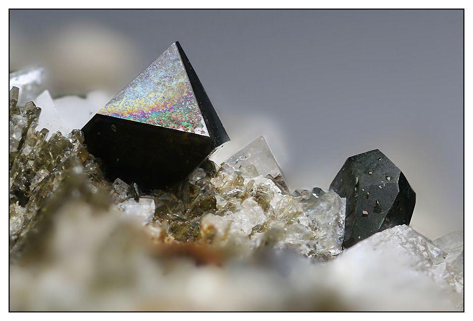 Magnetit-Kristall, beige Blättchen eines Minerals der Chlorit-Gruppe, Adular-Kristall und Hämatit-Kristall mit aufgewachsenen Rutil-Kristallen.
