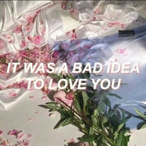 Love Quote And Grunge Image Flower AestheticFlower