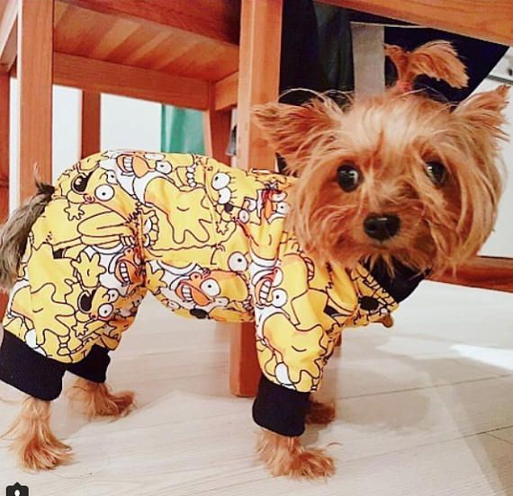 Official Website on feet at professional website Warm and Cosy Dog Full Body Coat This Dog Raincoat is made ...