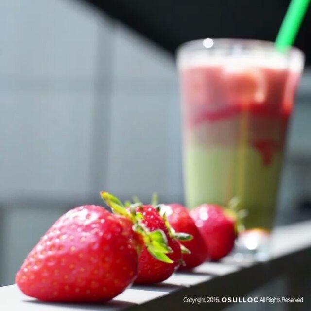 달콤, 상큼, 싱그러움. 입 안을 봄으로 가득 채워주는 오설록의 딸기 메뉴.