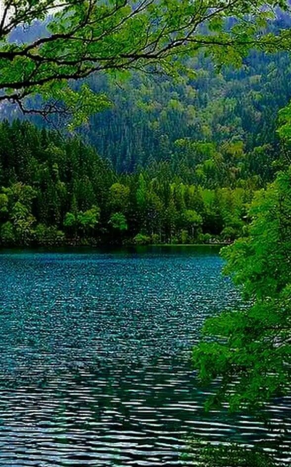 Un Momento Magico Para La Fotografia La Hora Dorada Beautiful Nature Beautiful Landscapes Nature Photography