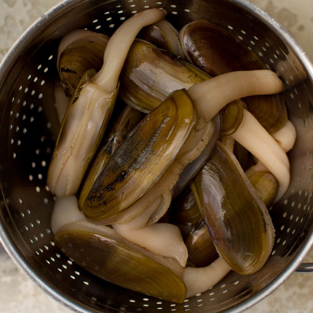 How to clean razor clams Clam recipes