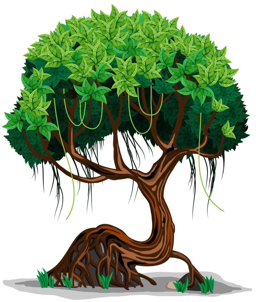 Webpaws Family Run Providing Safe Parent Approved Online Games For - Jungle tree google search