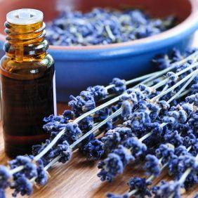 La aromaterapia con aceite de lavanda podría aliviar dolores de cabeza