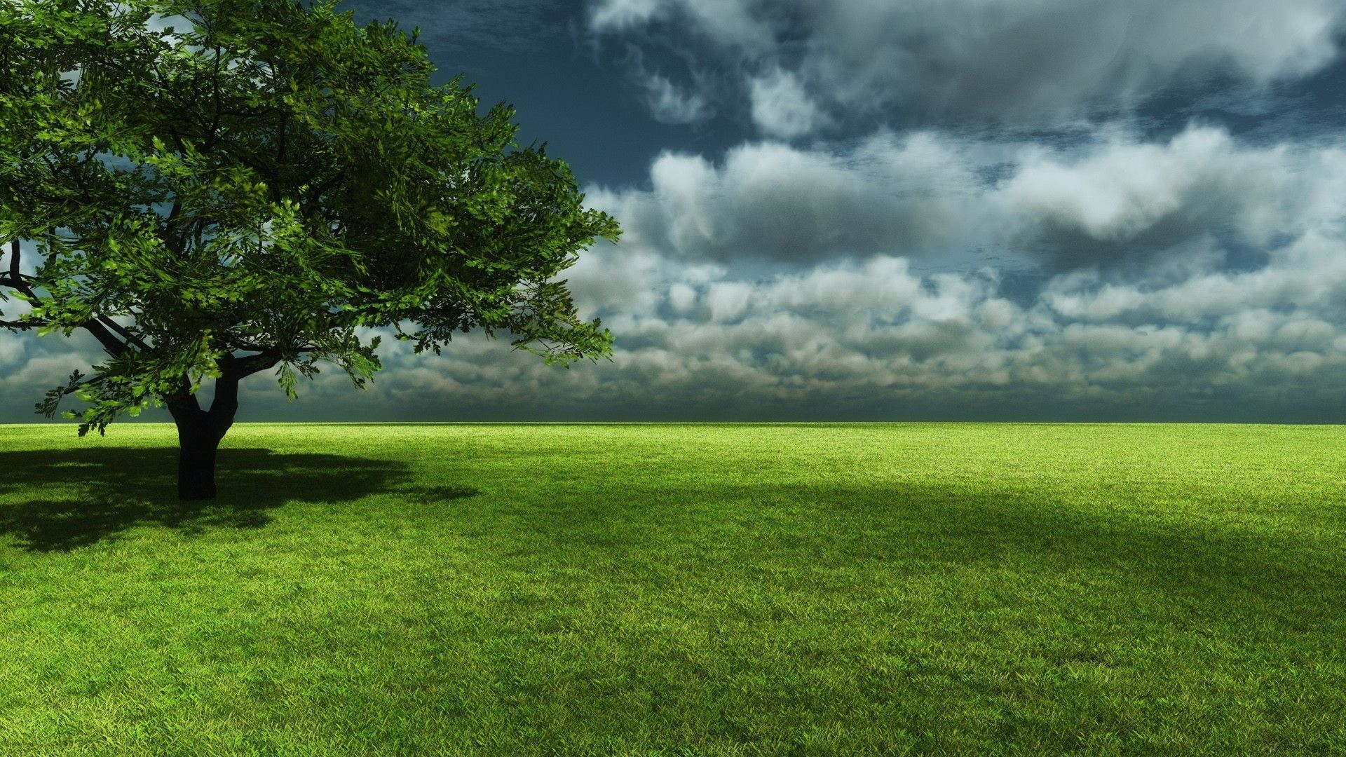 3d Nature Tree Beautiful Landscapes Landscape Background Beautiful Nature