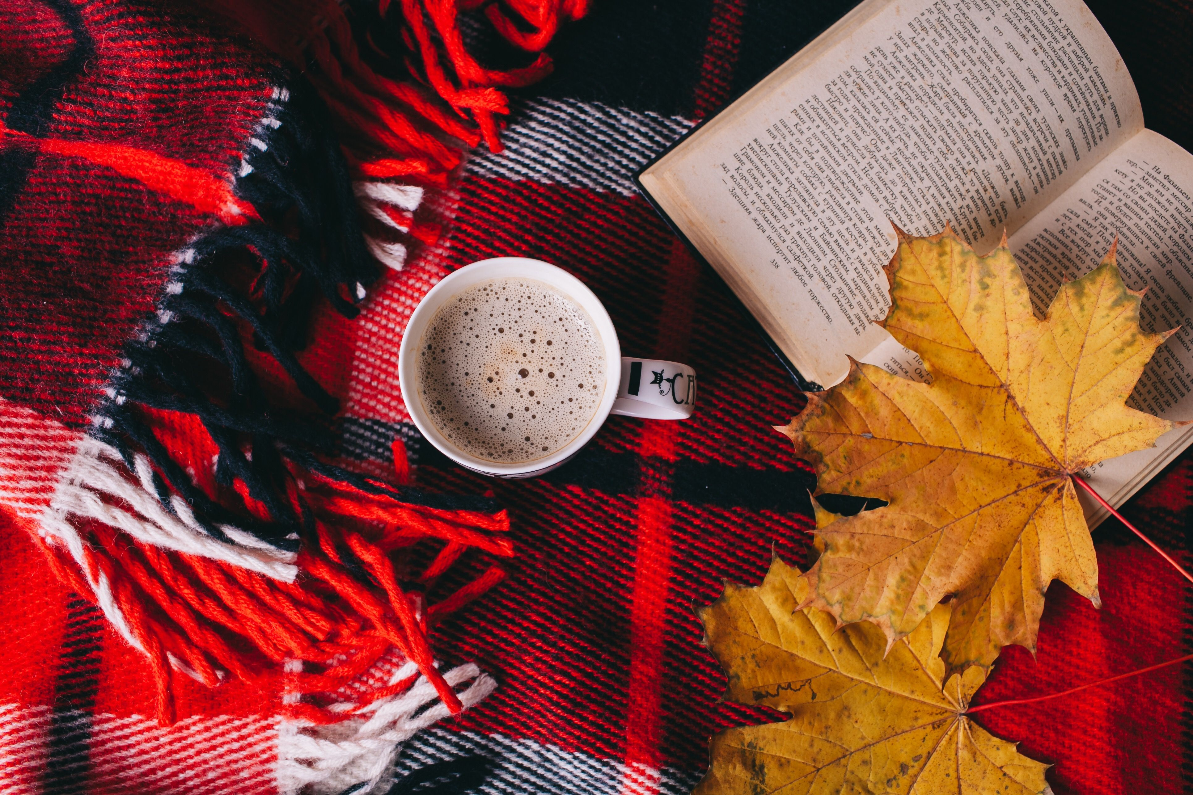 время картинки осень теплый плед вписывается интерьер
