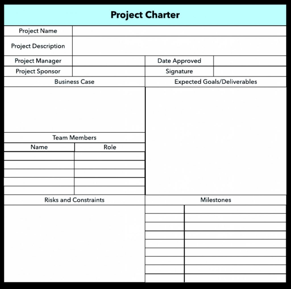 Template Ideas Project Charter Ppt Fascinating Six Sigma