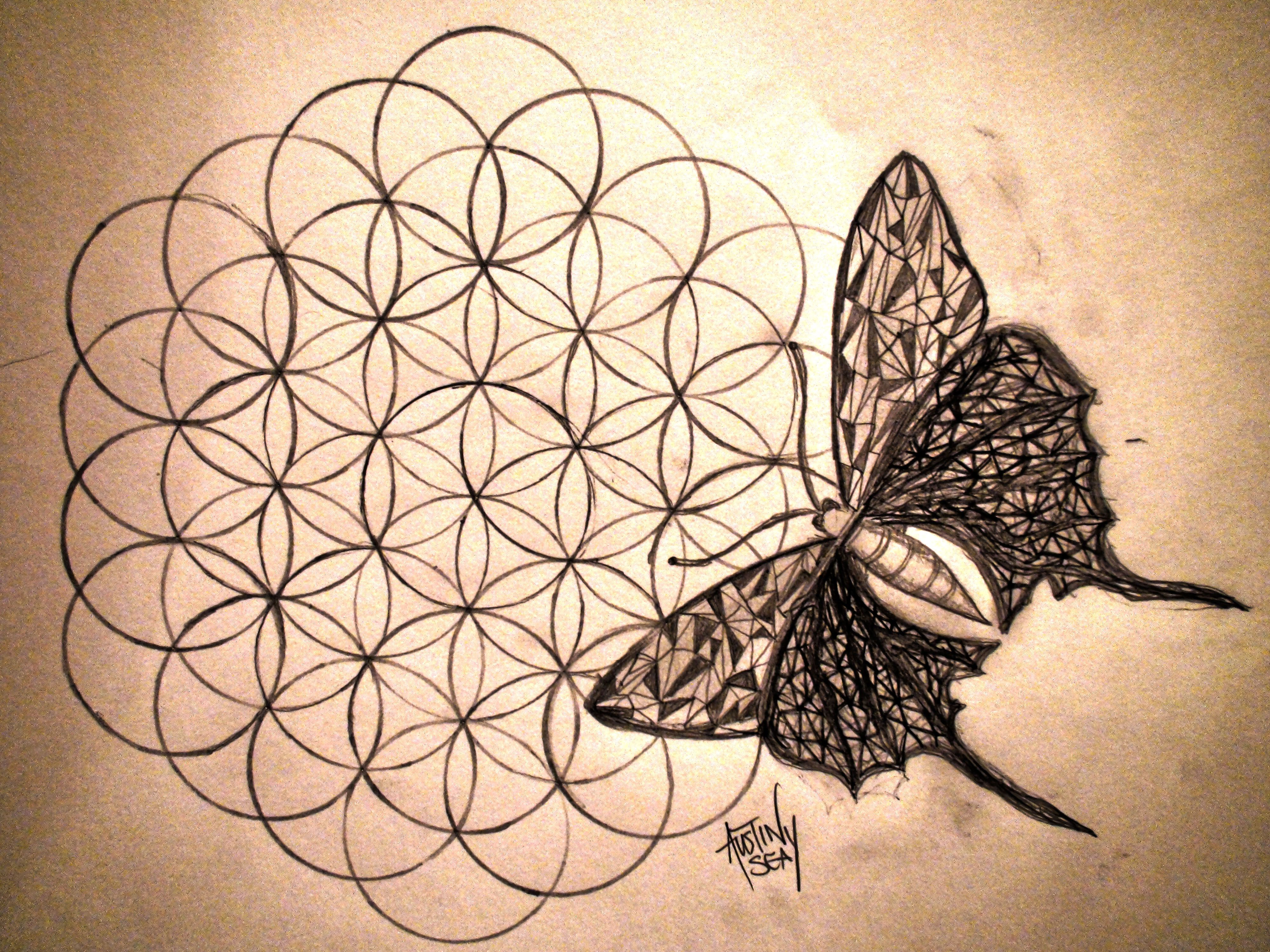 Butterfly on the Flower of Life. Flower of life tattoo