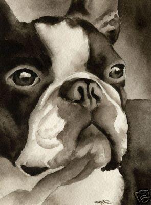 Bulldog Art Print Sepia Watercolor 11 x 14 by Artist DJR