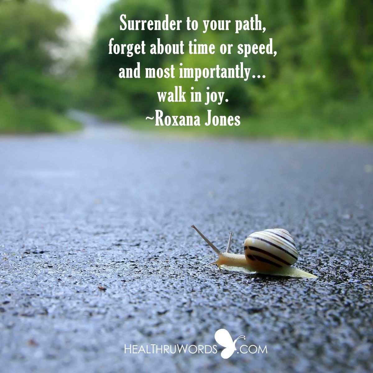 Path Quotes: Surrender To Your Path, Forget About Time Or Speed, And