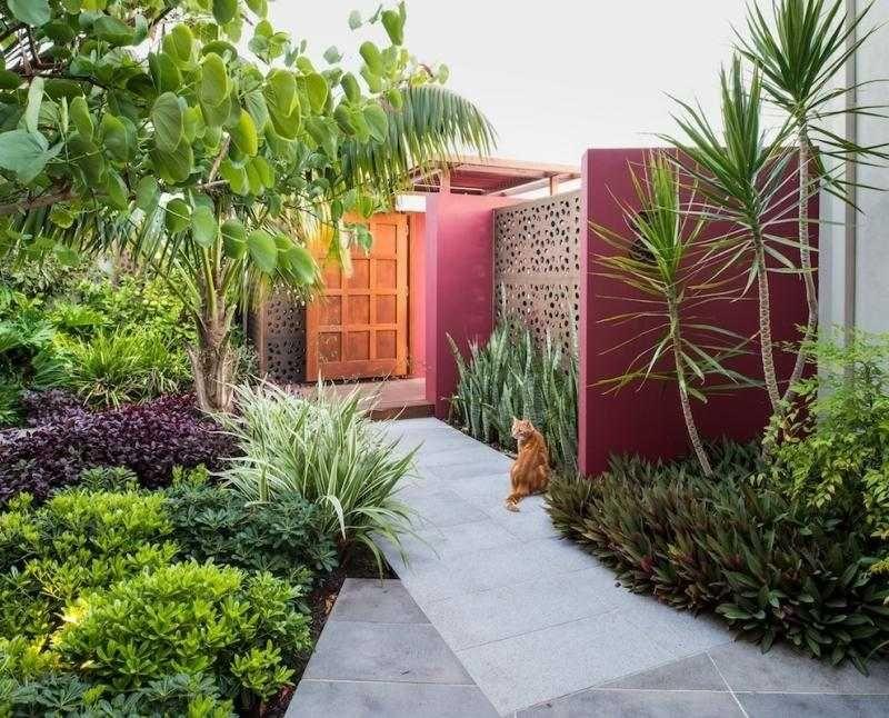 Aménagement petit jardin en 55 photos fascinantes! Concrete walls