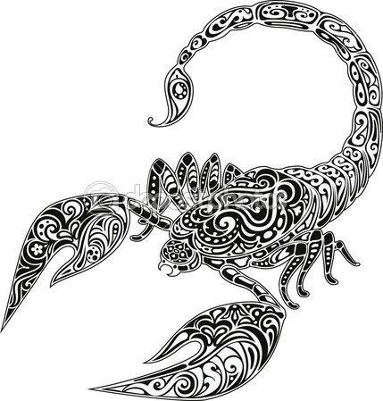 Scorpion Stokovye Foto Illyustracii I Vektornye Izobrazheniya Stranica 2 แมงป อง ไอเด ยรอยส ก แมลง