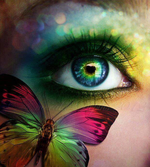 butterfly in my eyes