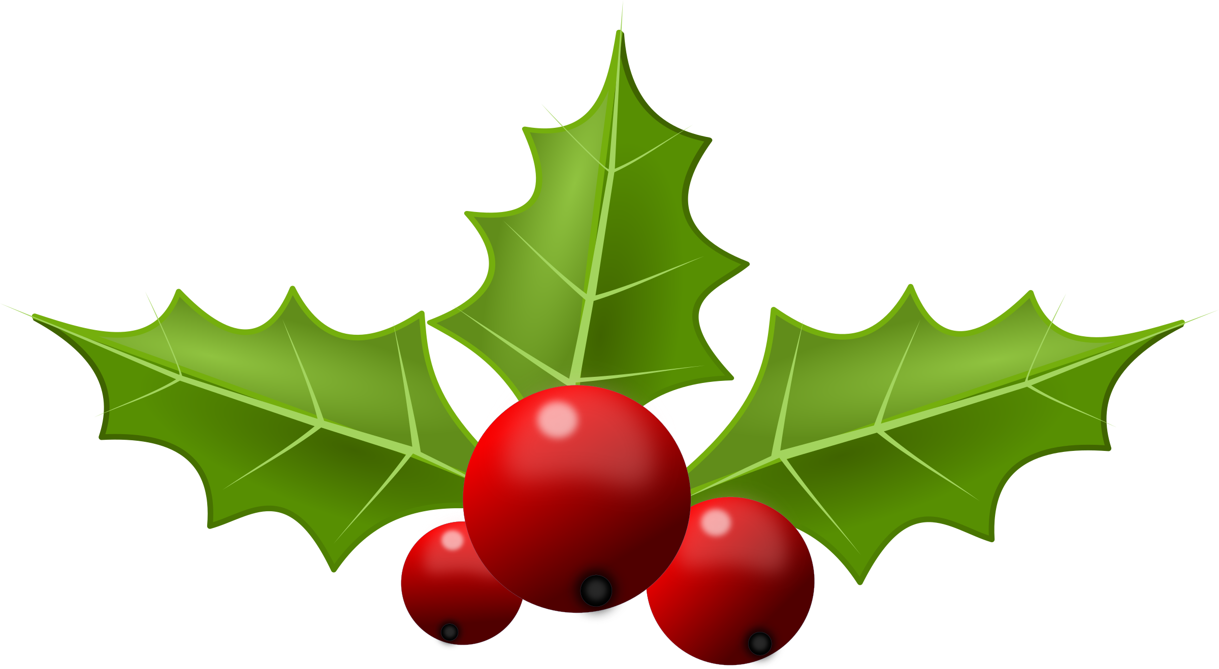 Holly6 Png 2400 1319 Christmas Holly Holly Berries Holly